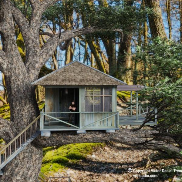 Cabane dans les arbres |  House in a Tree